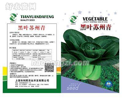 白菜种子-黑叶苏州青