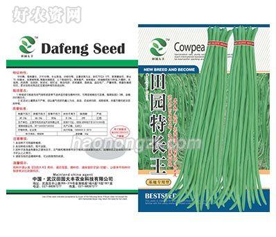 豇豆类种子-田园特长王