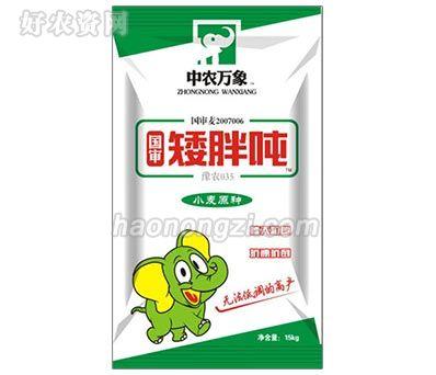 国审矮胖吨-豫农035小麦原种