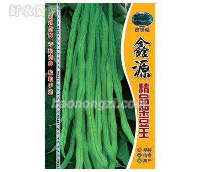 架豆种子-鑫源精品架豆王-鑫源种业