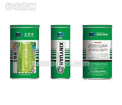 架豆种子-荷兰绿冠009-鑫源种业