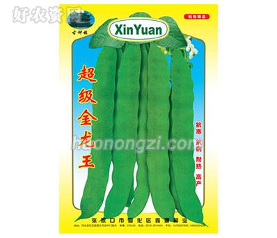 架豆种子-超级金龙王-鑫源种业