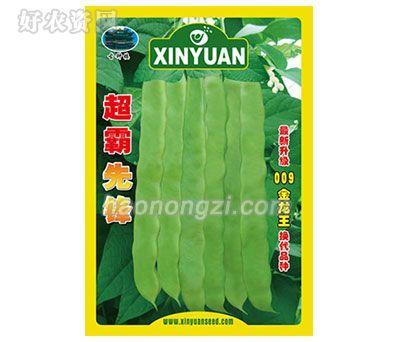 架豆种子-超霸先锋-鑫源种业