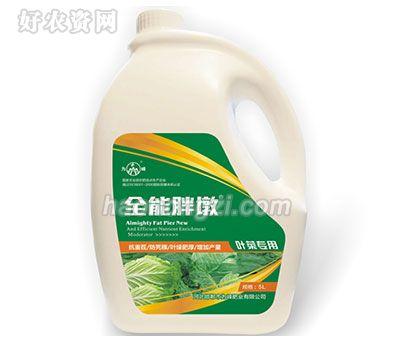 叶菜专用冲施肥-全能胖墩-为峰肥业