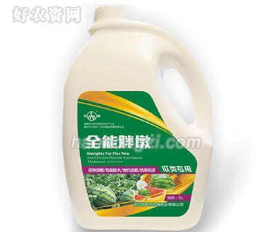 瓜类专用冲施肥-全能胖墩-为峰肥业