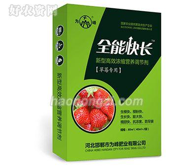 新型高效浓缩营养调节剂-全能快长(草莓专用)-为峰肥业