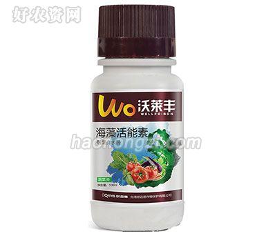 海藻活能素(蔬菜类)-沃莱丰-欧迈思