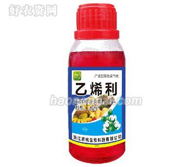 授粉精华素-天骄国际-叶面喷施替代人工授粉