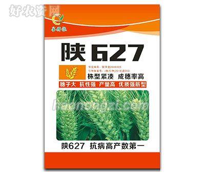 陕627-小麦种子-郑州喜得粮