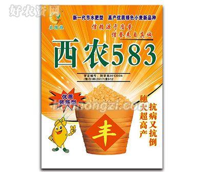 西农583-小麦种子-郑州喜得粮