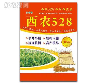 西农528-小麦种子-郑州喜得粮