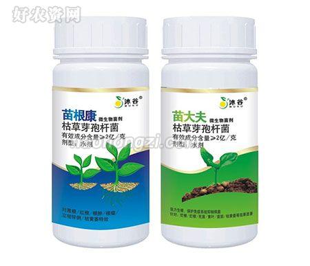 枯草芽孢杆菌-苗根康、苗大夫-河南沐谷